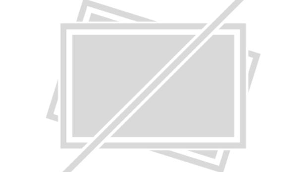preview image for Winchester – Das Haus der Verdammten mit Helen Mirren